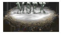 msfxstudio.com boutique