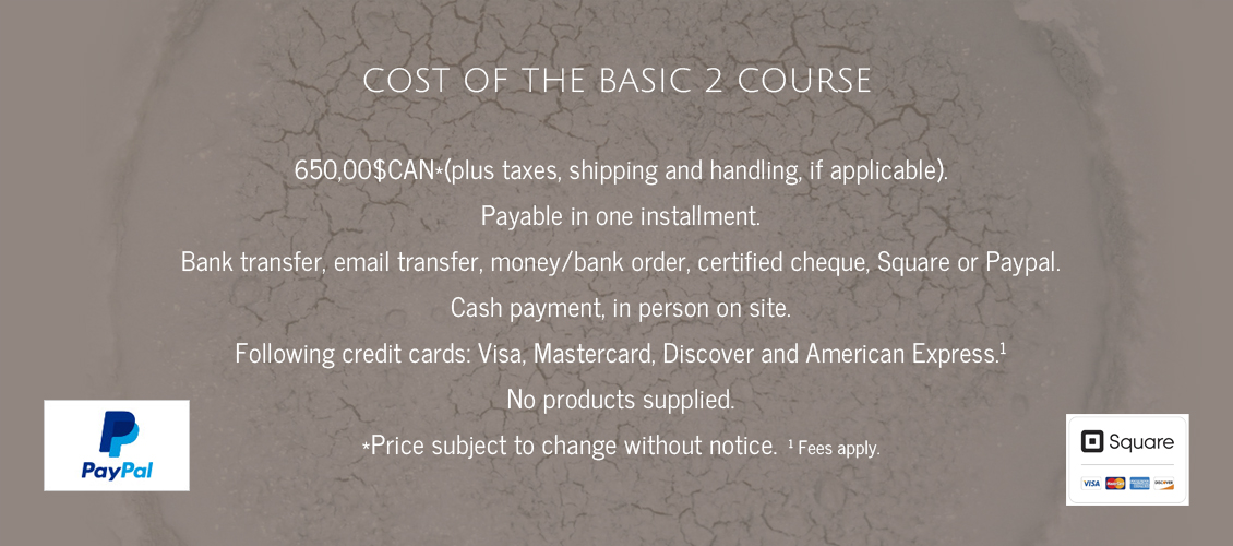 Cost of the Basic 2 course
